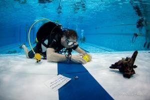 Specialisatie onderwaterfotografie