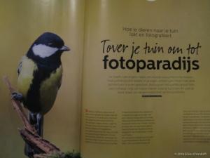 Zoom_fotoparadijs